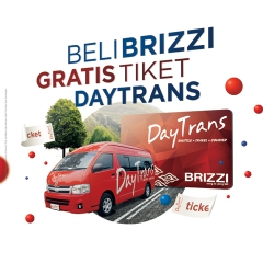 BRIZZI - DAY TRANS